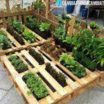 Organik Bahçecilik Fikirleri 47