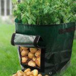 Organik Bahçecilik Fikirleri 48