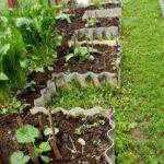 Organik Bahçecilik Fikirleri 50