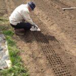Organik Bahçecilik Fikirleri 62