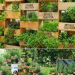 Organik Bahçecilik Fikirleri 68