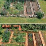 Organik Bahçecilik Fikirleri 73