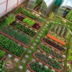 Organik Bahçecilik Fikirleri 74