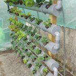 Organik Bahçecilik Fikirleri 80