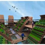 Organik Bahçecilik Fikirleri 85