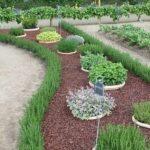Organik Bahçecilik Fikirleri 92