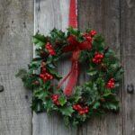 Yılbaşı Noel Çelenkleri ve Yapılışı 28