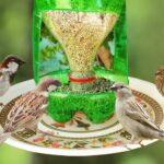 Kuş Yemliği Nasıl Yapılır? 64