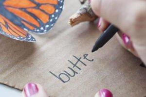 Kelebeğin Yaşam Döngüsü Okul Öncesi 1