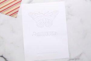 Kelebeğin Yaşam Döngüsü Okul Öncesi 3