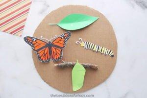 Kelebeğin Yaşam Döngüsü Okul Öncesi 6