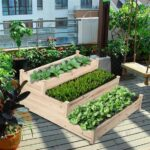 Sebze Bahçesi Nasıl Düzenlenir? 10