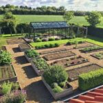 Sebze Bahçesi Nasıl Düzenlenir? 11