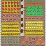 Sebze Bahçesi Nasıl Düzenlenir? 12