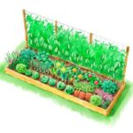 Sebze Bahçesi Nasıl Düzenlenir? 13