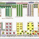 Sebze Bahçesi Nasıl Düzenlenir? 14