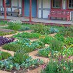 Sebze Bahçesi Nasıl Düzenlenir?