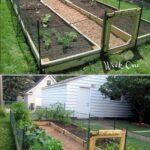 Sebze Bahçesi Nasıl Düzenlenir? 31