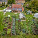 Sebze Bahçesi Nasıl Düzenlenir? 33