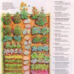 Sebze Bahçesi Nasıl Düzenlenir? 38
