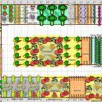 Sebze Bahçesi Nasıl Düzenlenir? 40
