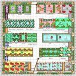 Sebze Bahçesi Nasıl Düzenlenir? 44
