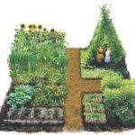 Sebze Bahçesi Nasıl Düzenlenir? 49