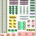 Sebze Bahçesi Nasıl Düzenlenir? 51