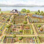 Sebze Bahçesi Nasıl Düzenlenir? 55