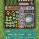Sebze Bahçesi Nasıl Düzenlenir? 56