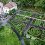 Sebze Bahçesi Nasıl Düzenlenir? 60