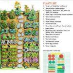Sebze Bahçesi Nasıl Düzenlenir? 61