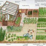 Sebze Bahçesi Nasıl Düzenlenir? 64