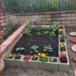 Sebze Bahçesi Nasıl Düzenlenir? 70