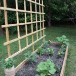 Sebze Bahçesi Nasıl Düzenlenir? 75