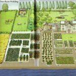 Sebze Bahçesi Nasıl Düzenlenir? 76