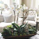 Orkide Nasıl Bakılır? 25