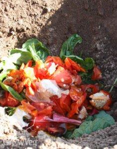 Sebze Meyve Atıklarından Gübre Yapımı