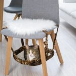 Kedi Hamağı Yapımı