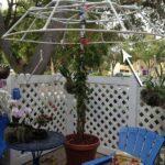 Plastik Borularla Bahçe Dekorasyon Fikirleri 16