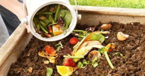 Sebze Meyve Atıklarından Gübre Yapımı 5