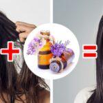 Saç Bakımı Doğal Yöntemler