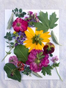 Canlı Çiçeklerden Çerçeve Yapımı 2