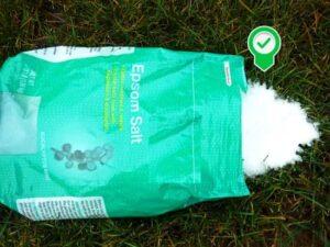 Bahçede Neden Epsom Tuzu Kullanmalıyız? 5