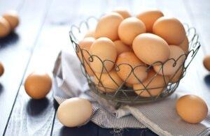 Yağ Yakıcı ve Metabolizma Hızlandırıcı Yiyecekler 1